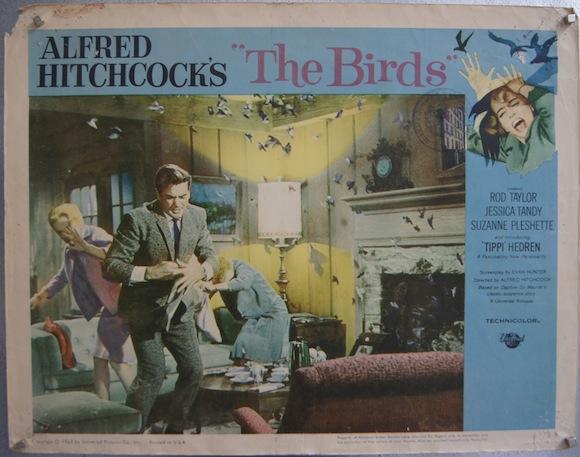 BIRDS lobby card 1963 Alfred Hitchcock Tippi Hedren